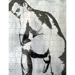 Adult Jigsaw Puzzle Nude Cock and Ass, explicit